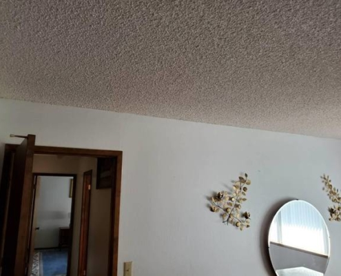"Image of a ""Popcorn"" ceiling, also known as stucco, stipple, or acoustic ceilings. May contain asbestos, lead, or both."