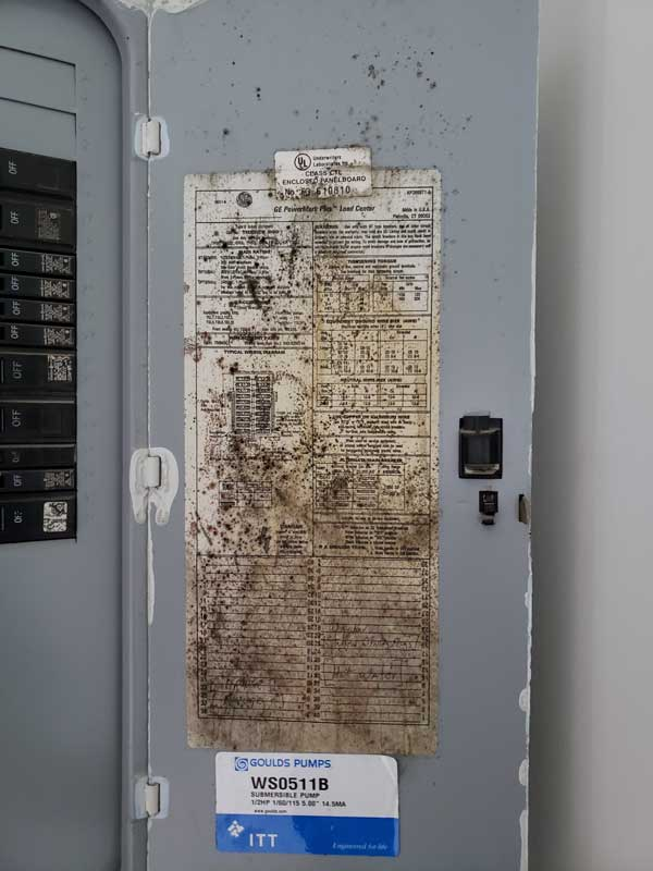 Mold on electric panel