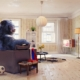 A black bear in the living room | On Target Home Inspection | Home Owners Claims Orland Park